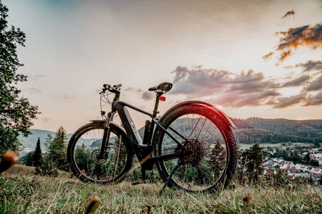 différence entre vélo électrique et vélo à assistance électrique