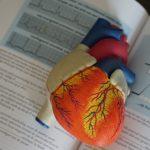 Fréquence cardiaque élevée à l'effort, comment la maitriser?